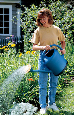 3 Gal FRENCH WATERING CAN $24.95